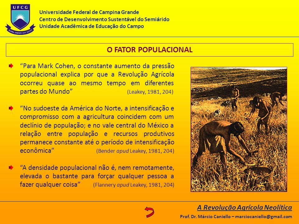 O FATOR POPULACIONAL A Revolução Agrícola Neolítica