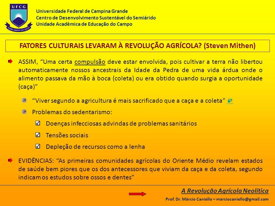 FATORES CULTURAIS LEVARAM À REVOLUÇÃO AGRÍCOLA (Steven Mithen)