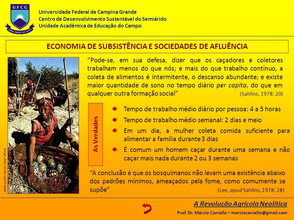 ECONOMIA DE SUBSISTÊNCIA E SOCIEDADES DE AFLUÊNCIA