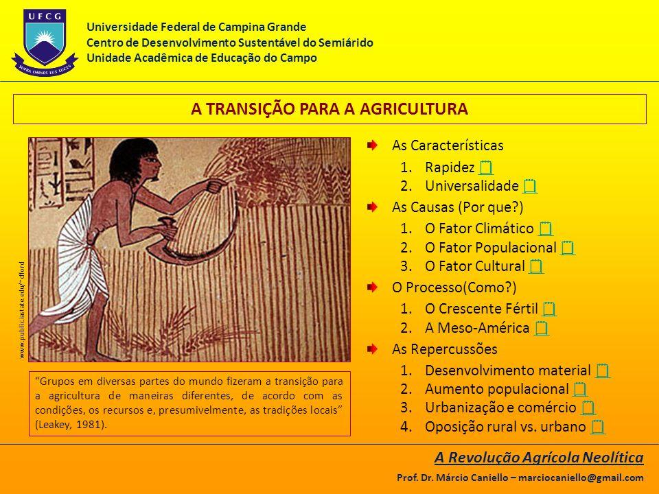 A TRANSIÇÃO PARA A AGRICULTURA