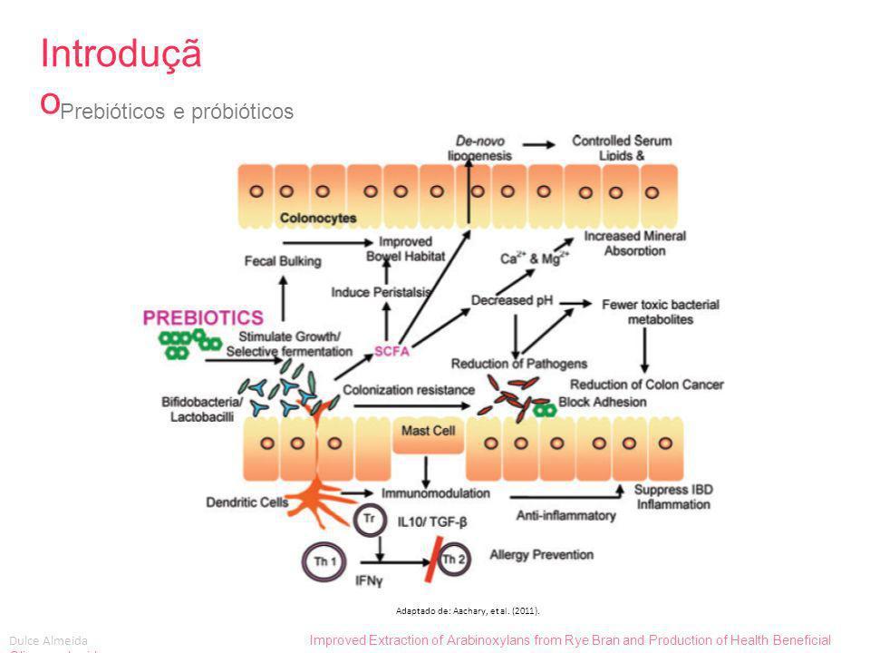 Introdução Prebióticos e próbióticos