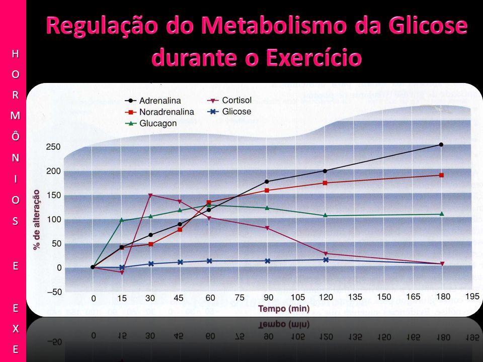 Regulação do Metabolismo da Glicose durante o Exercício