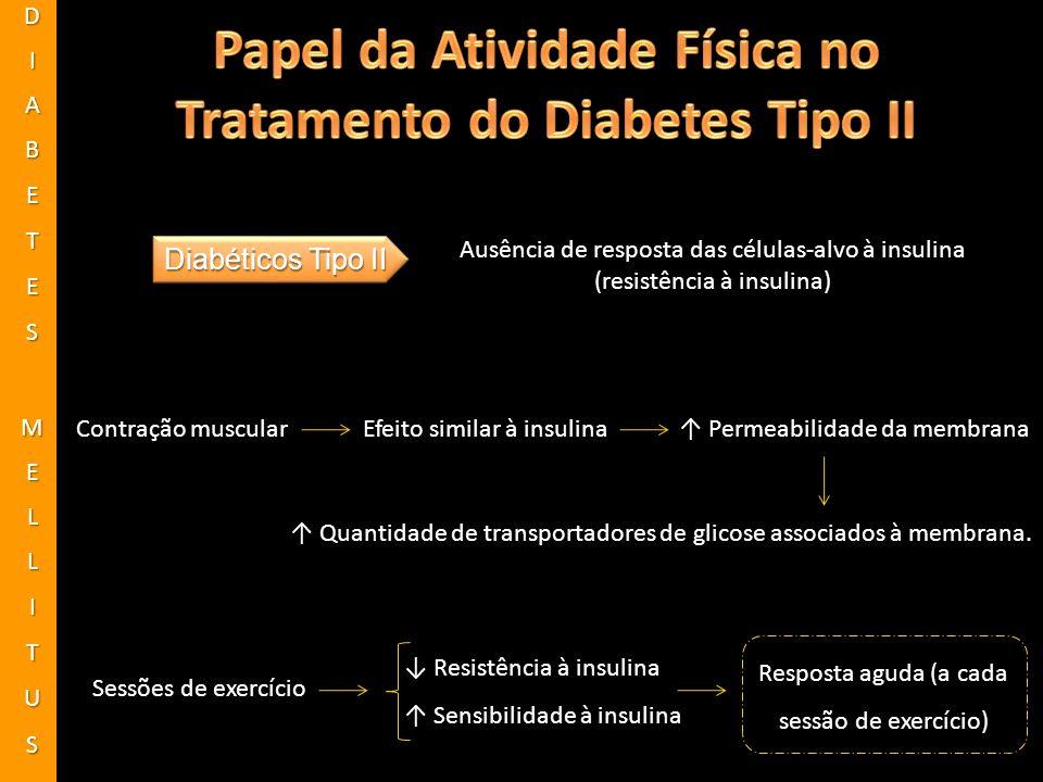 Papel da Atividade Física no Tratamento do Diabetes Tipo II