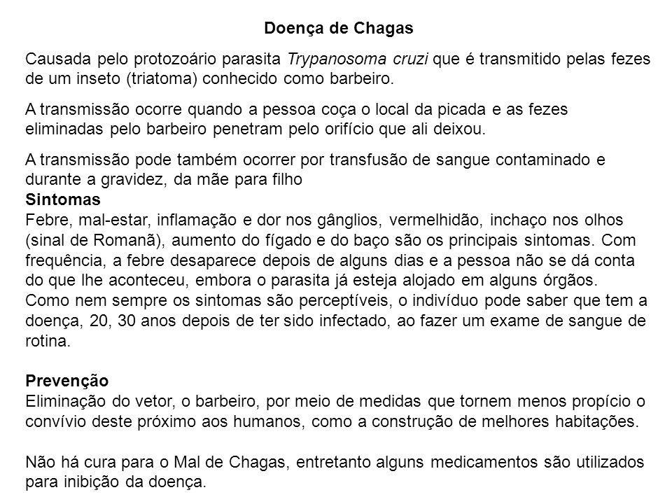 Doença de Chagas Causada pelo protozoário parasita Trypanosoma cruzi que é transmitido pelas fezes de um inseto (triatoma) conhecido como barbeiro.
