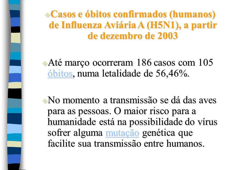 Casos e óbitos confirmados (humanos) de Influenza Aviária A (H5N1), a partir de dezembro de 2003