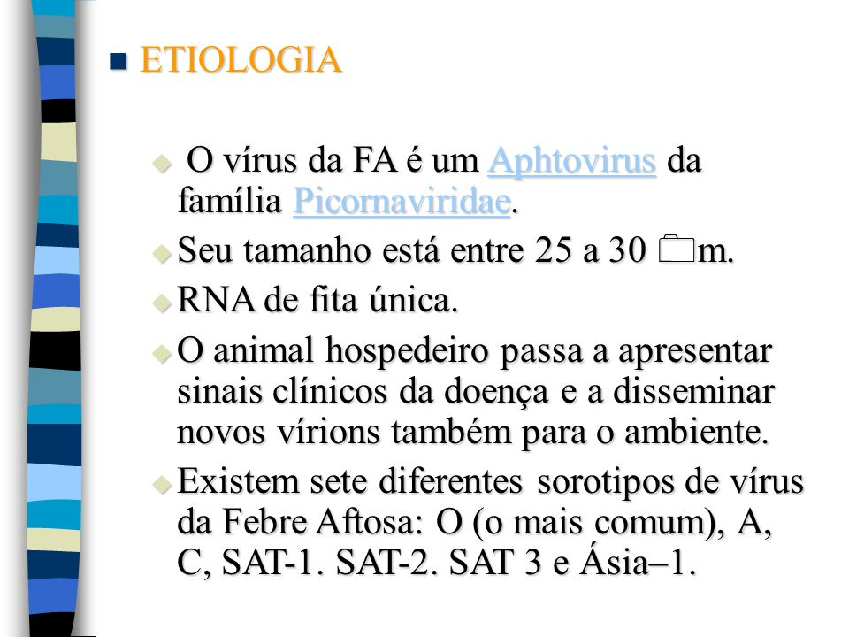 ETIOLOGIA O vírus da FA é um Aphtovirus da família Picornaviridae. Seu tamanho está entre 25 a 30 m.