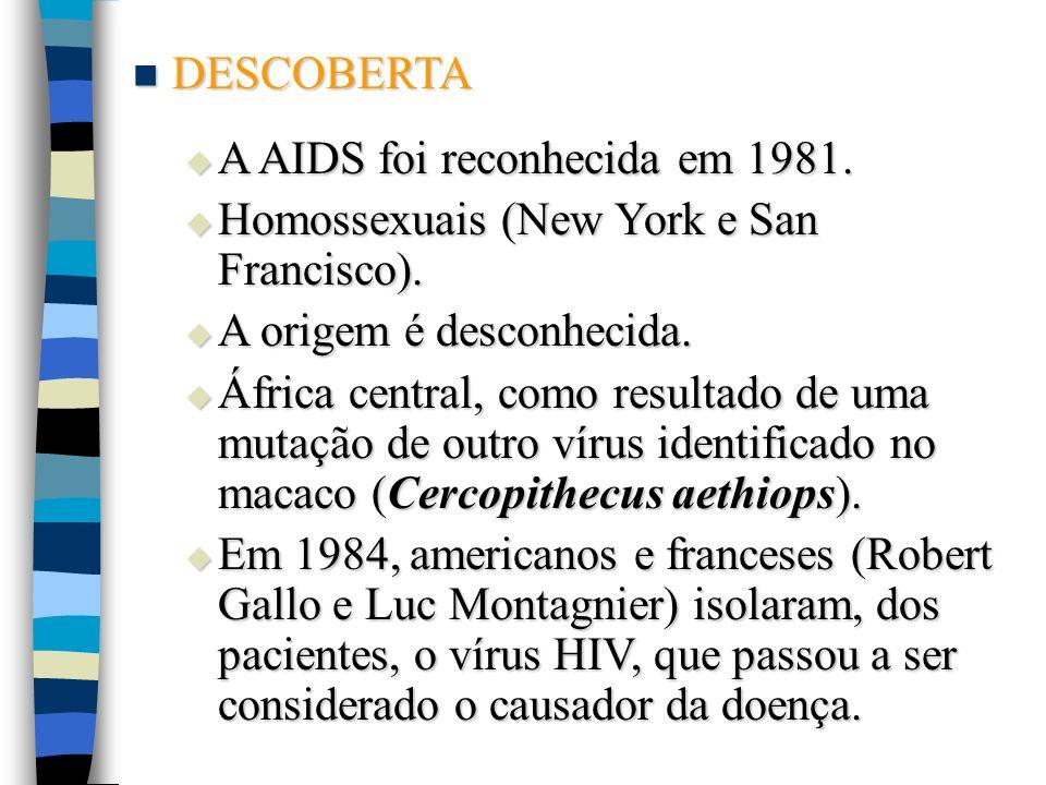 DESCOBERTA A AIDS foi reconhecida em 1981. Homossexuais (New York e San Francisco). A origem é desconhecida.
