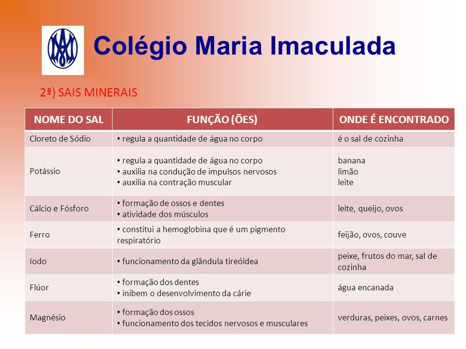 Colégio Maria Imaculada