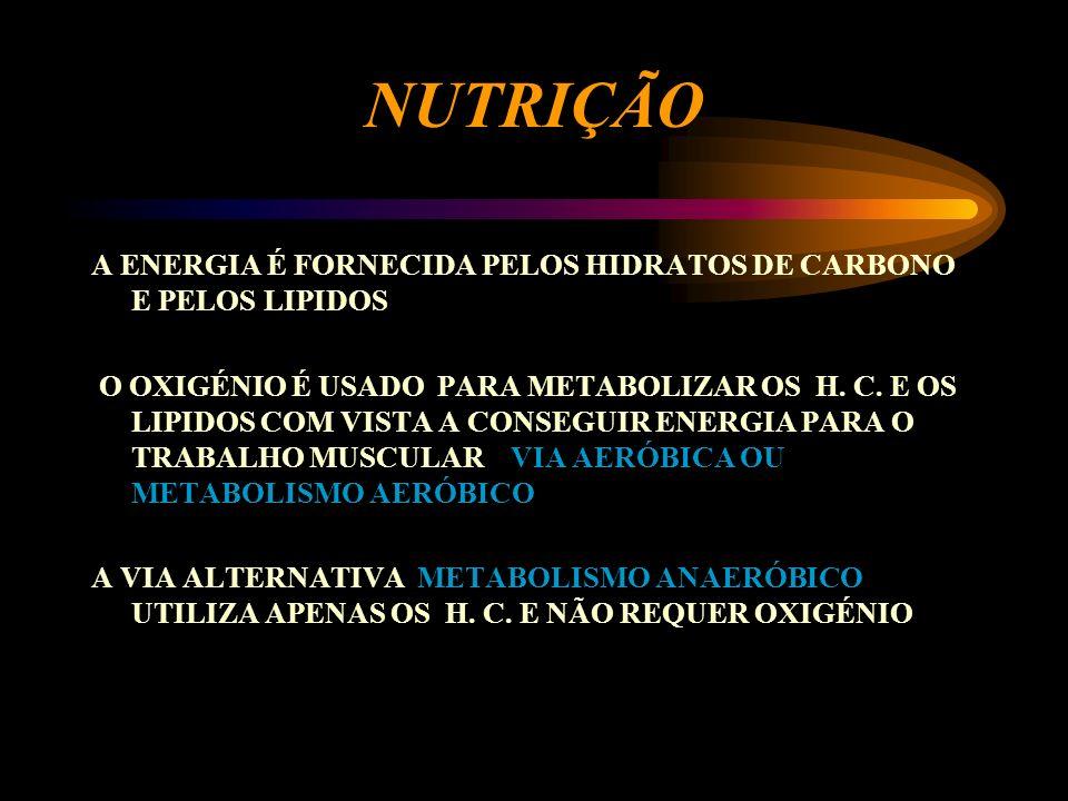 NUTRIÇÃO A ENERGIA É FORNECIDA PELOS HIDRATOS DE CARBONO E PELOS LIPIDOS.