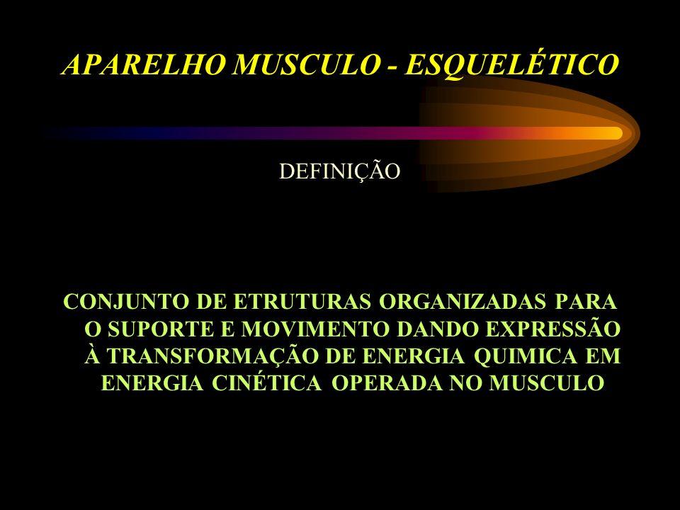 APARELHO MUSCULO - ESQUELÉTICO