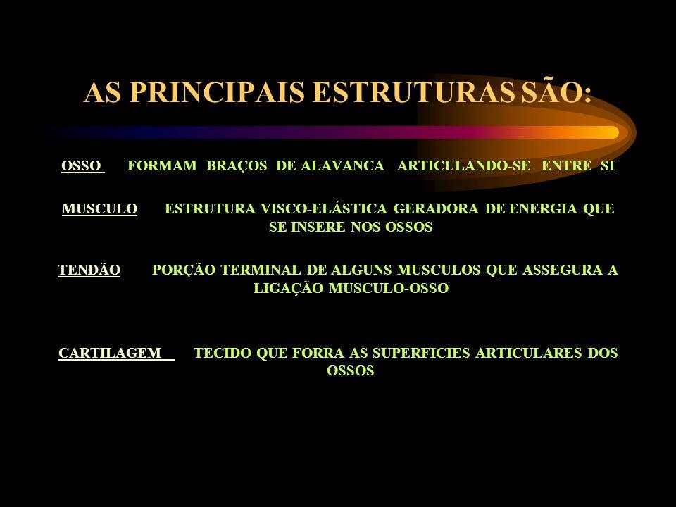 AS PRINCIPAIS ESTRUTURAS SÃO:
