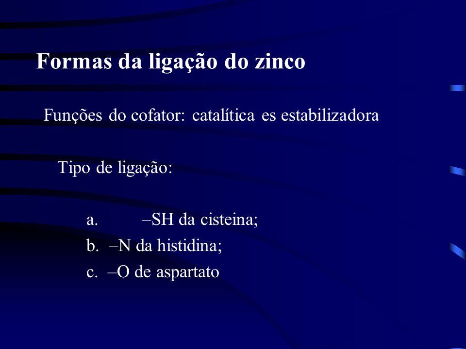 Formas da ligação do zinco