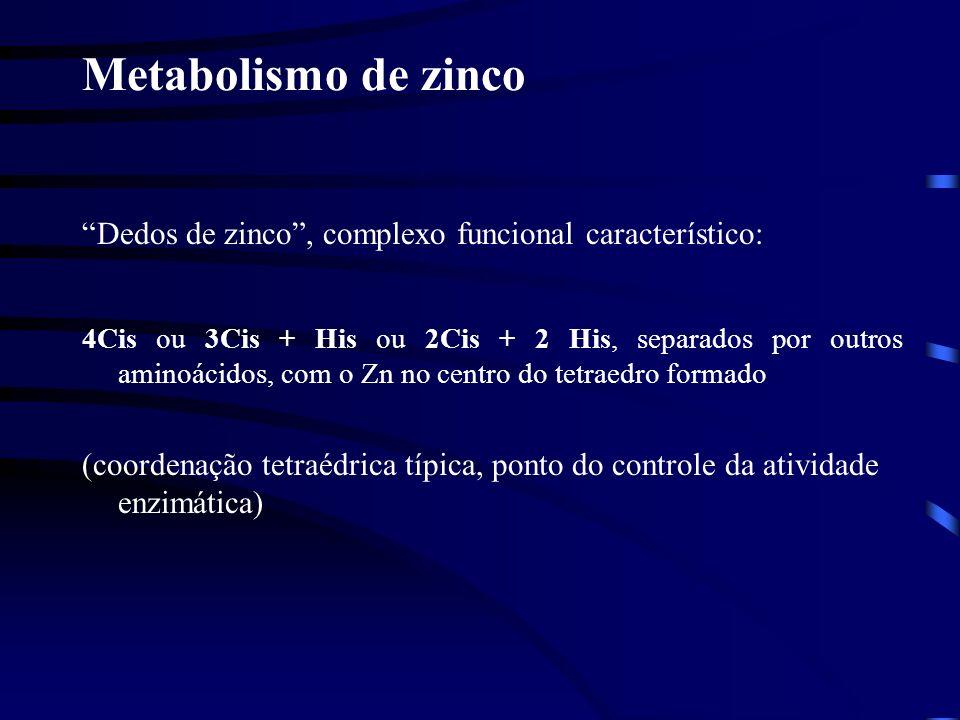 Metabolismo de zinco Dedos de zinco , complexo funcional característico: