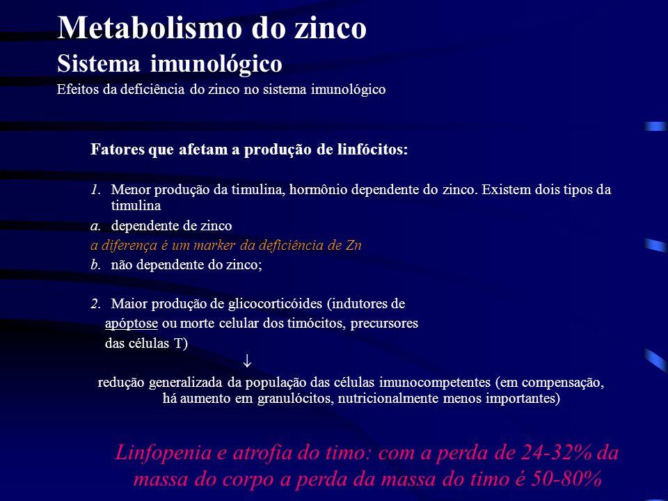 Metabolismo do zinco Sistema imunológico