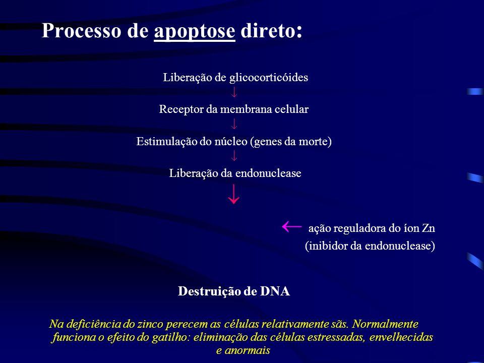 Processo de apoptose direto: