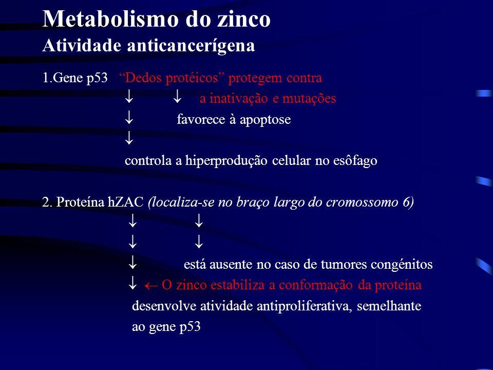 Metabolismo do zinco Atividade anticancerígena
