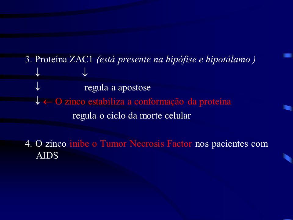 3. Proteína ZAC1 (está presente na hipófise e hipotálamo )