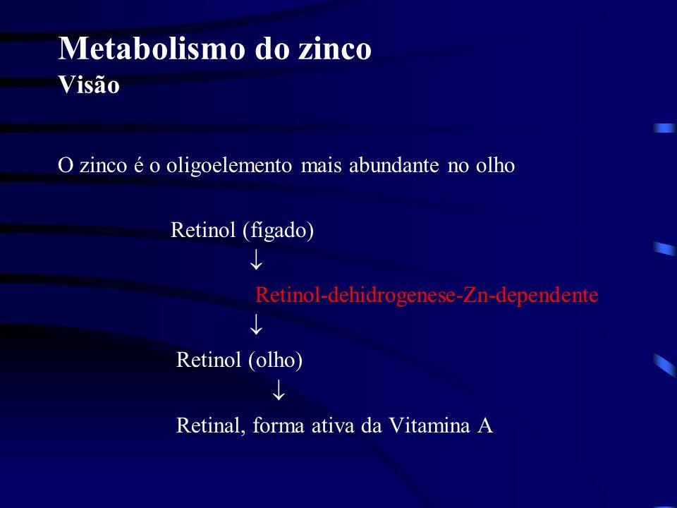 Metabolismo do zinco Visão