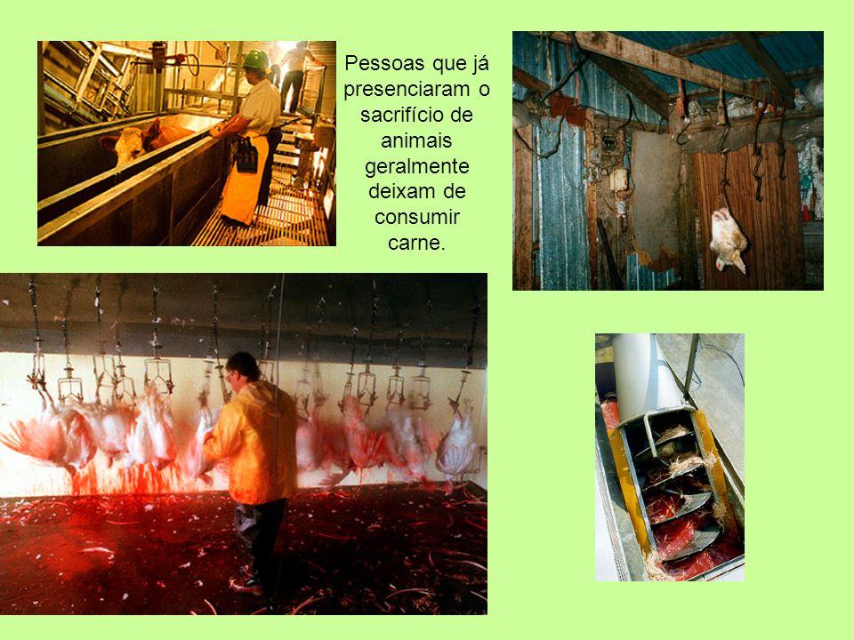 Pessoas que já presenciaram o sacrifício de animais geralmente deixam de consumir carne.