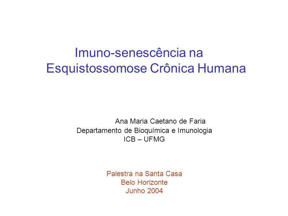 Imuno-senescência na Esquistossomose Crônica Humana