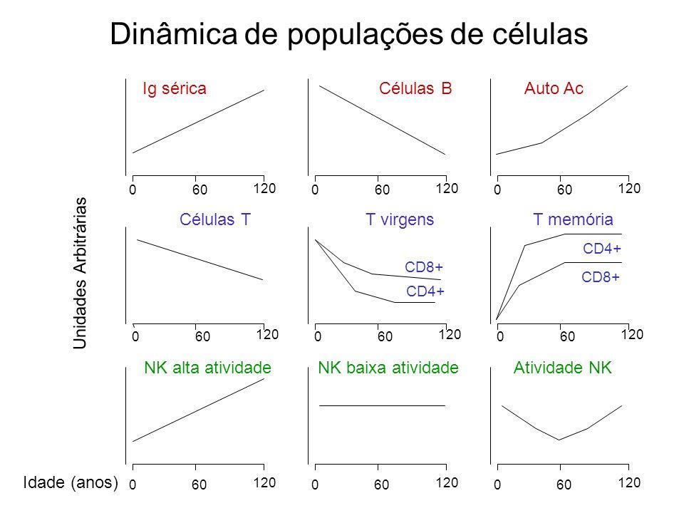 Dinâmica de populações de células