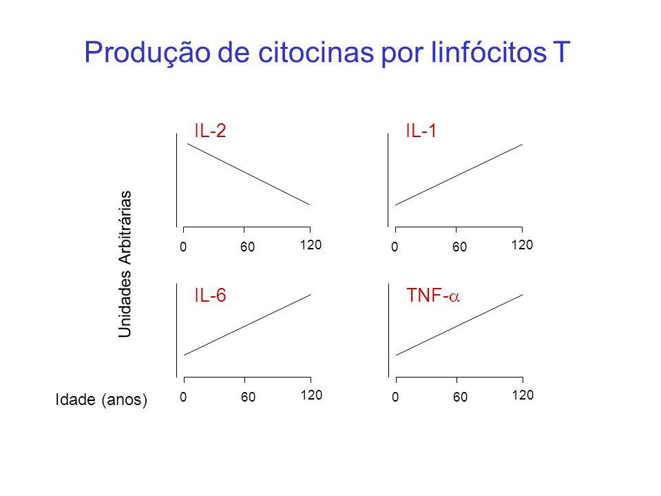 Produção de citocinas por linfócitos T