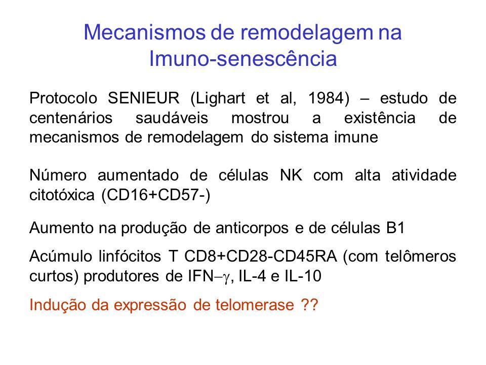 Mecanismos de remodelagem na Imuno-senescência