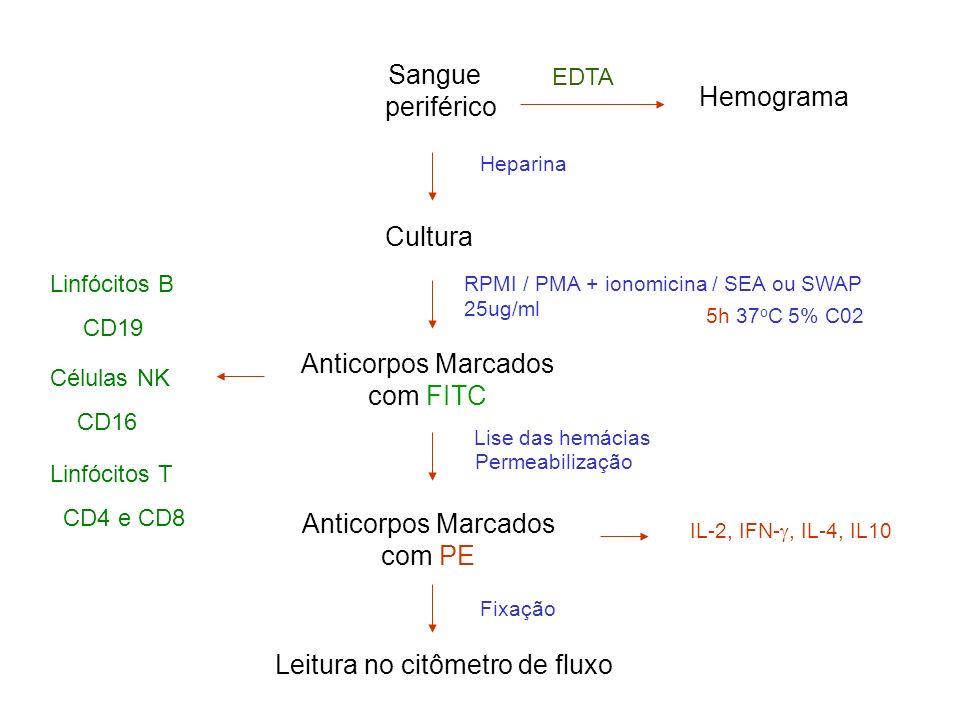 Anticorpos Marcados com FITC