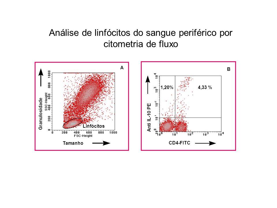 Análise de linfócitos do sangue periférico por citometria de fluxo