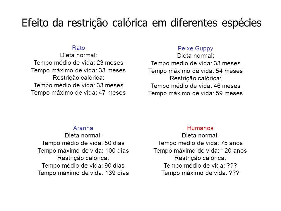 Efeito da restrição calórica em diferentes espécies