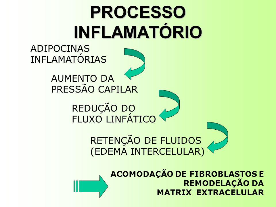 PROCESSO INFLAMATÓRIO