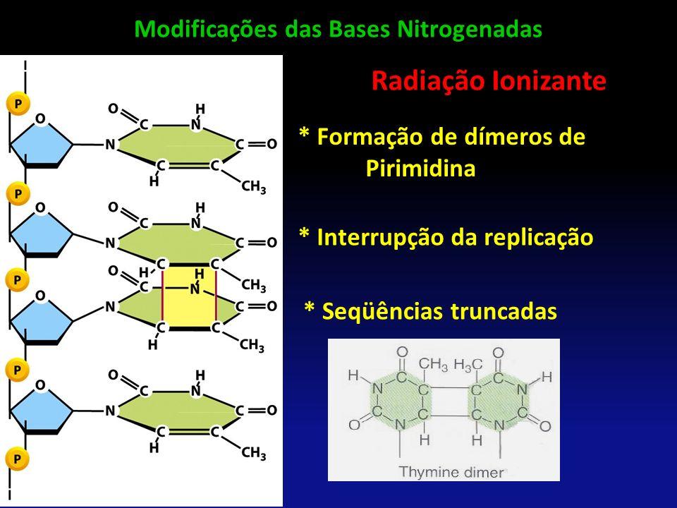 Modificações das Bases Nitrogenadas