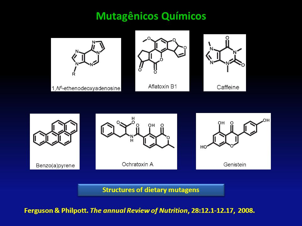 Structures of dietary mutagens