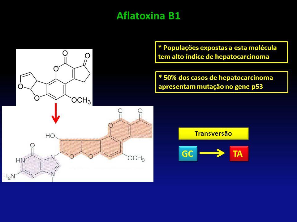 Aflatoxina B1 * Populações expostas a esta molécula tem alto índice de hepatocarcinoma.
