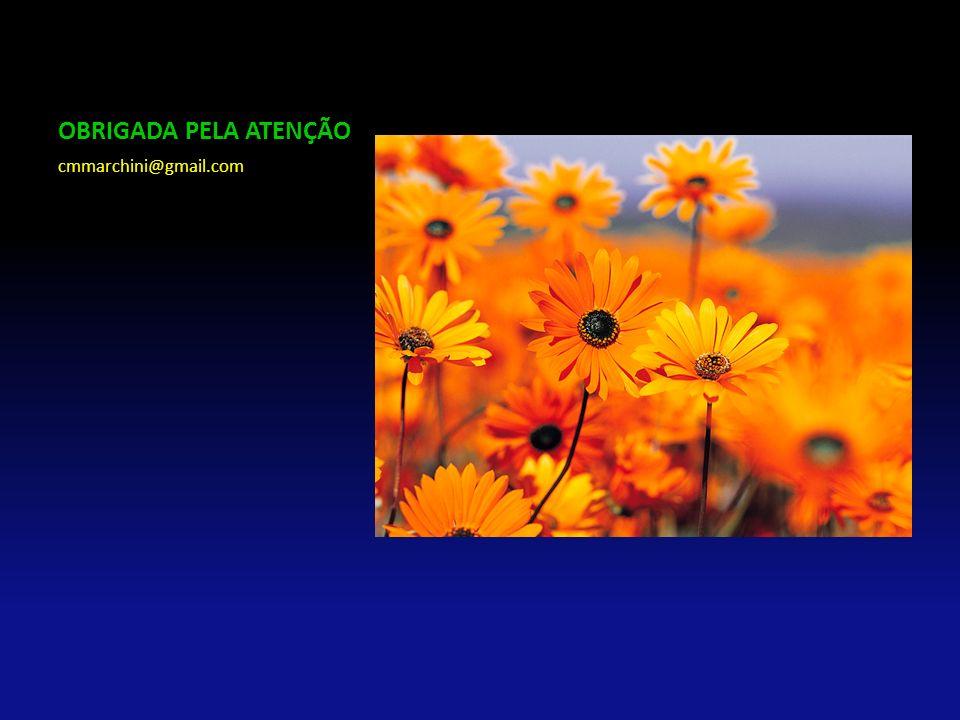 OBRIGADA PELA ATENÇÃO cmmarchini@gmail.com