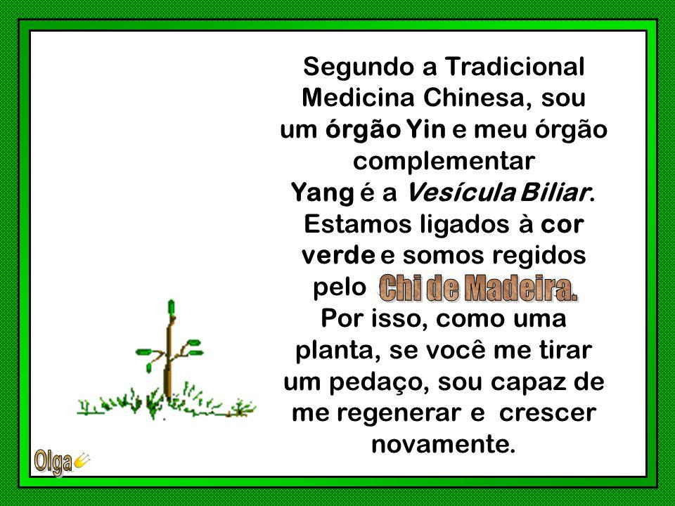 Segundo a Tradicional Medicina Chinesa, sou