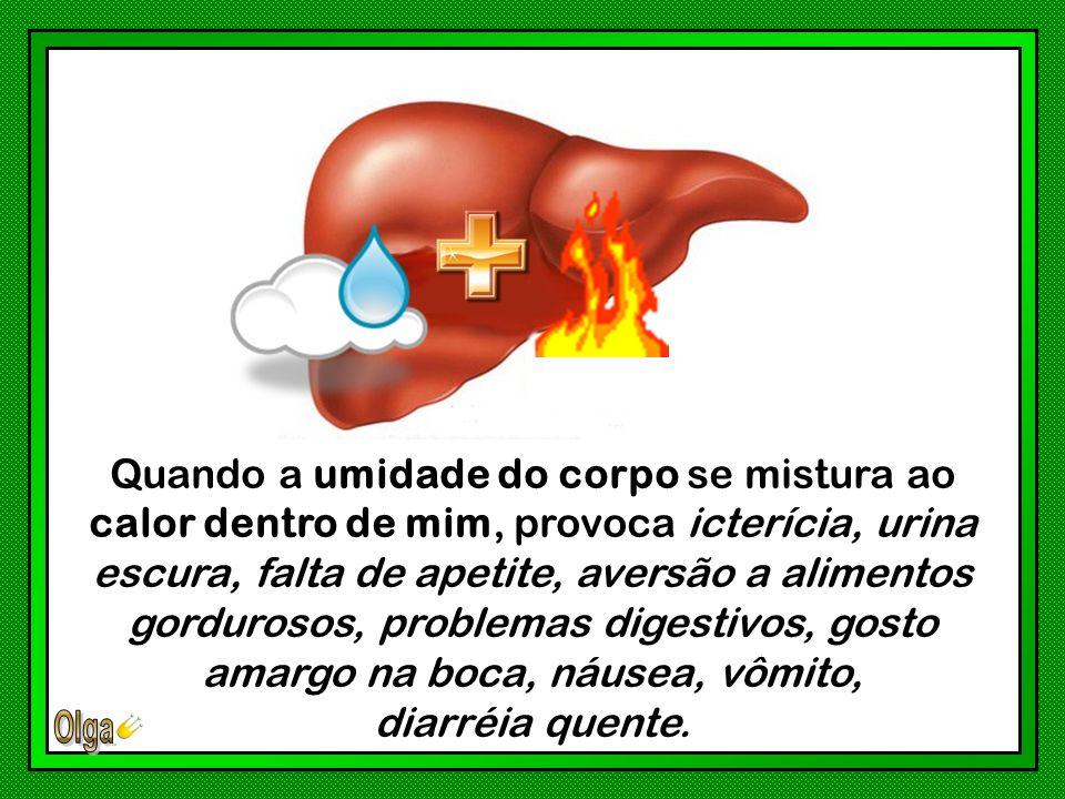 Quando a umidade do corpo se mistura ao calor dentro de mim, provoca icterícia, urina escura, falta de apetite, aversão a alimentos gordurosos, problemas digestivos, gosto amargo na boca, náusea, vômito,