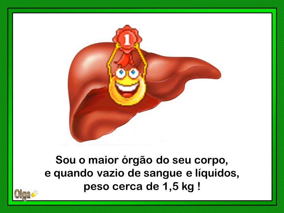Sou o maior órgão do seu corpo, e quando vazio de sangue e líquidos,