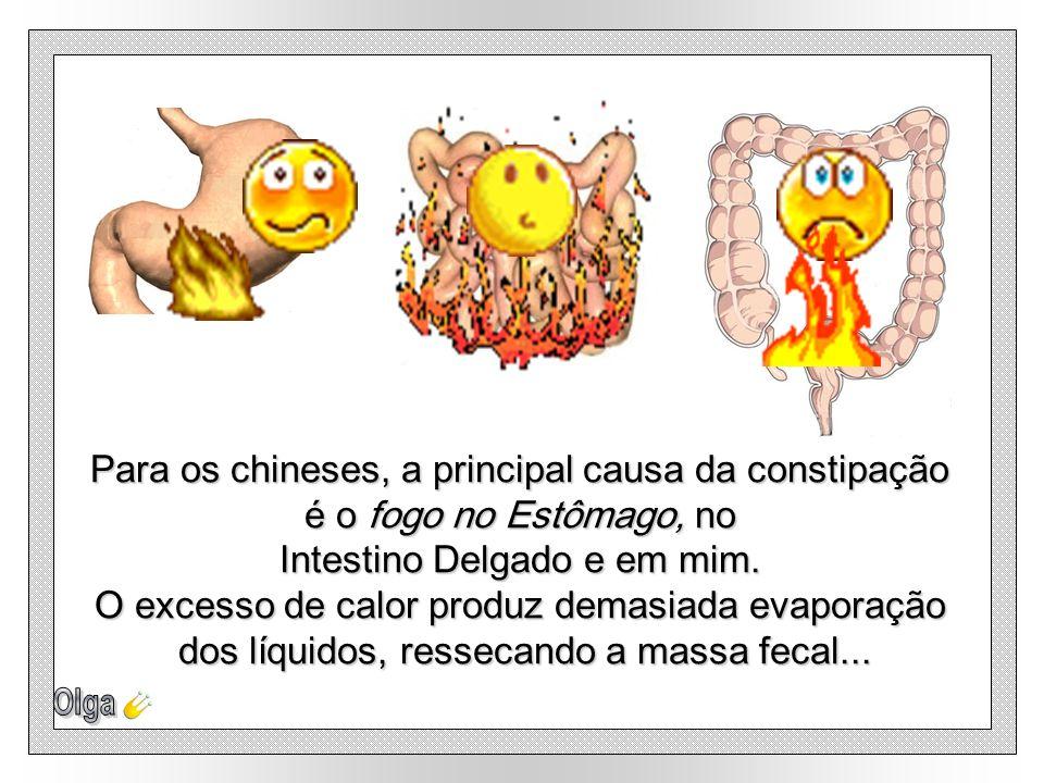 Para os chineses, a principal causa da constipação