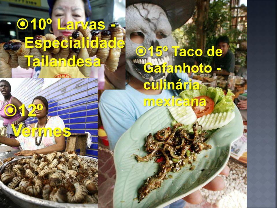 12º Vermes 10º Larvas - Especialidade Tailandesa