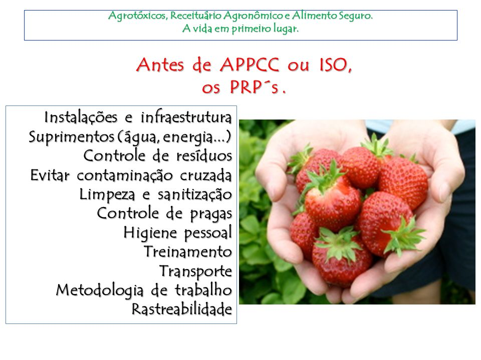 Antes de APPCC ou ISO, os PRP´s .