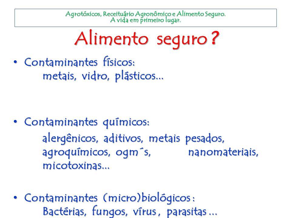 Alimento seguro Contaminantes físicos: metais, vidro, plásticos...