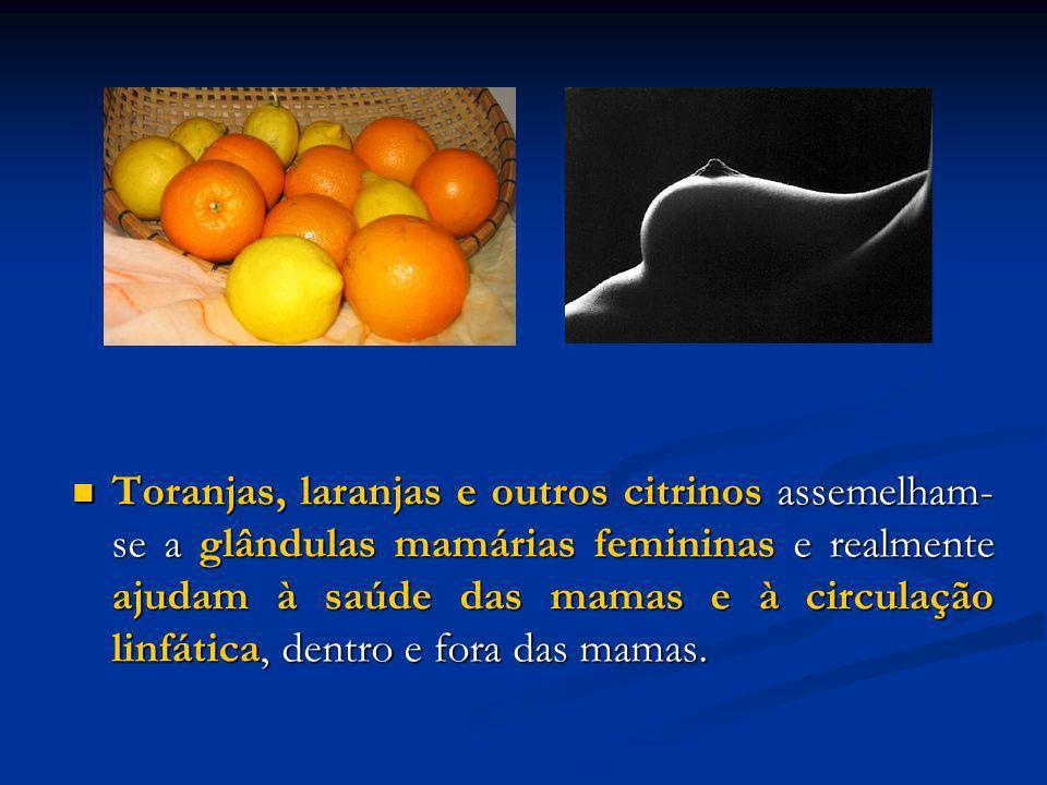 Toranjas, laranjas e outros citrinos assemelham-se a glândulas mamárias femininas e realmente ajudam à saúde das mamas e à circulação linfática, dentro e fora das mamas.