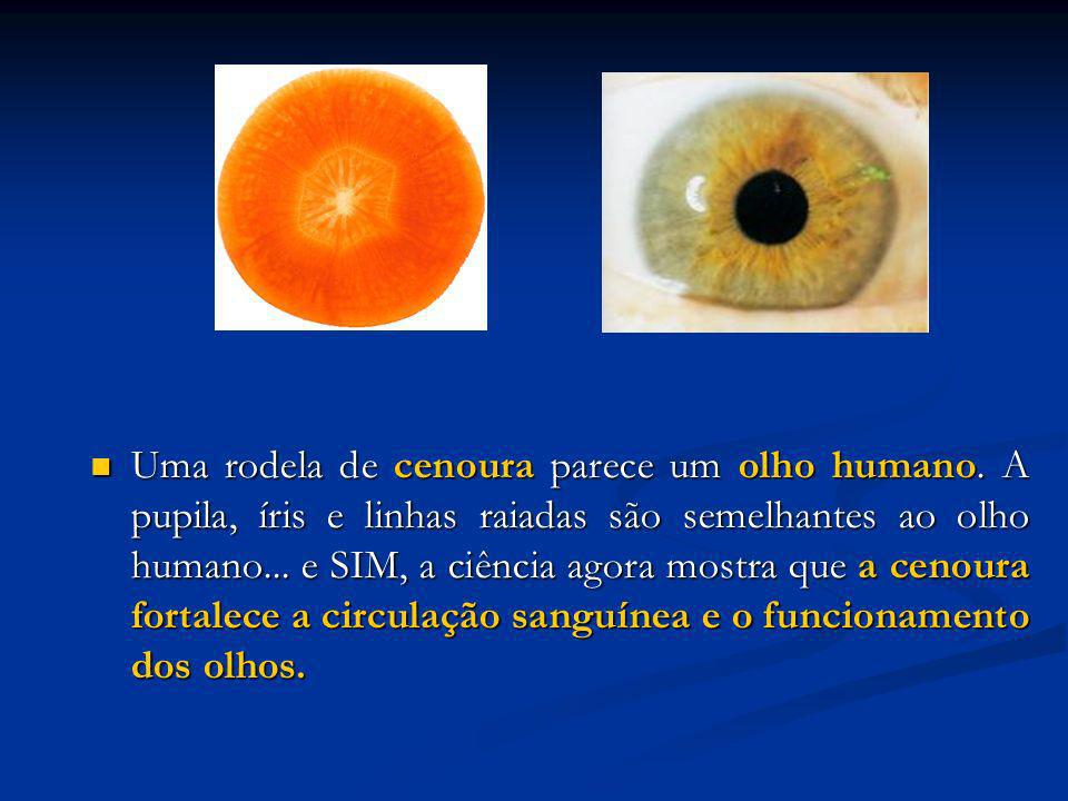 Uma rodela de cenoura parece um olho humano