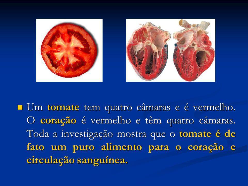 Um tomate tem quatro câmaras e é vermelho