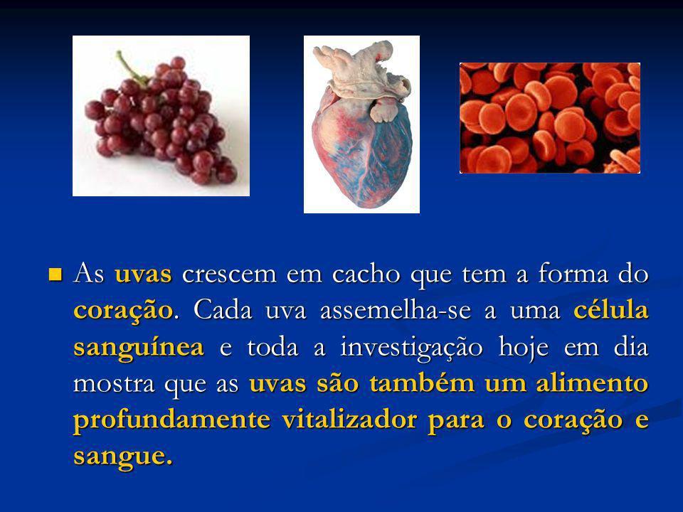 As uvas crescem em cacho que tem a forma do coração