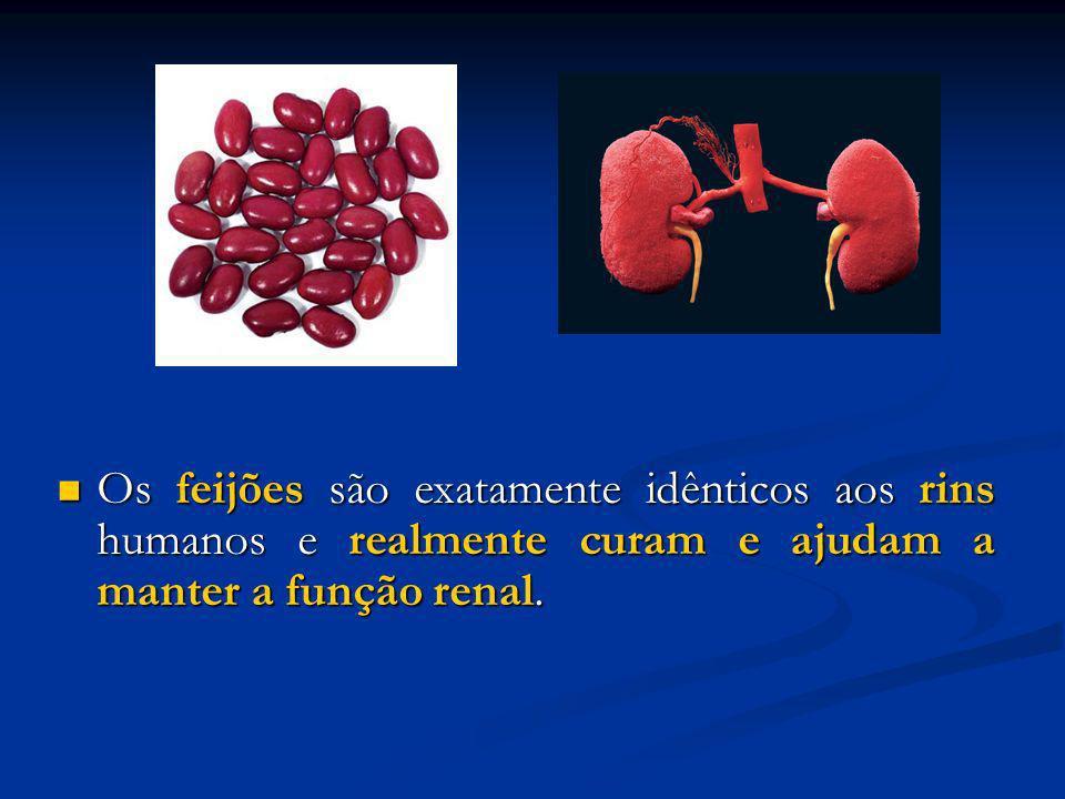 Os feijões são exatamente idênticos aos rins humanos e realmente curam e ajudam a manter a função renal.