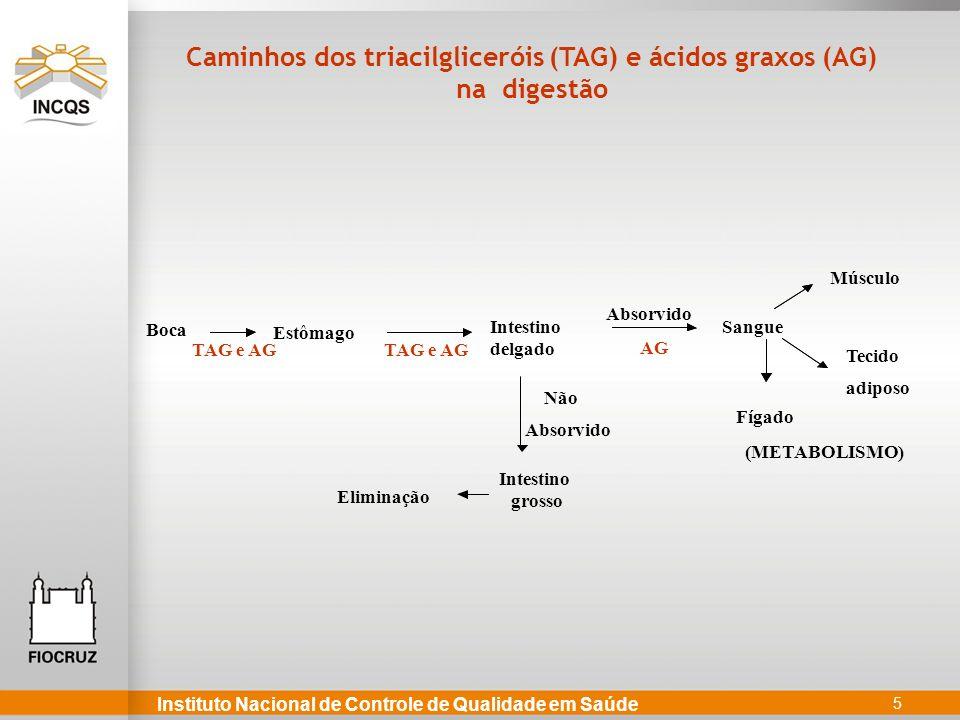 Caminhos dos triacilgliceróis (TAG) e ácidos graxos (AG)