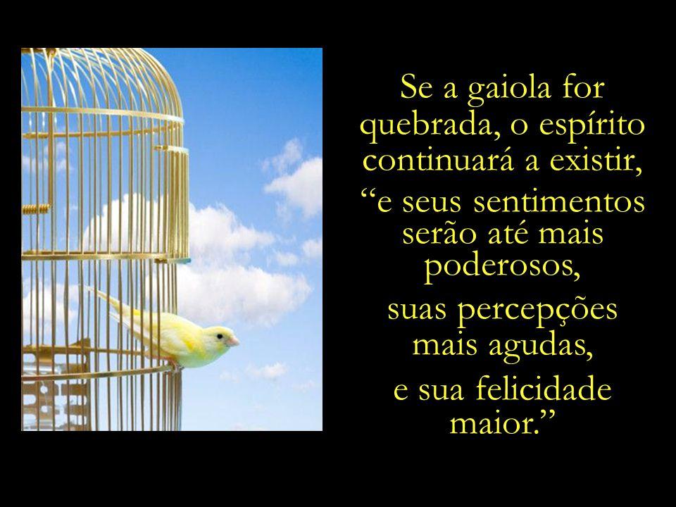 Se a gaiola for quebrada, o espírito continuará a existir,