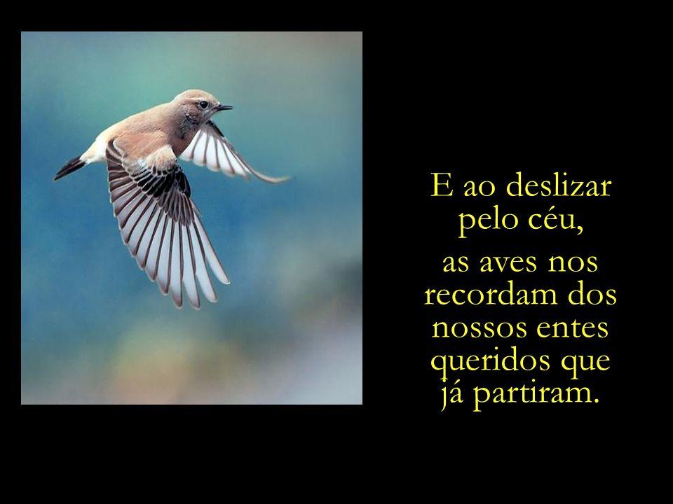 as aves nos recordam dos nossos entes queridos que